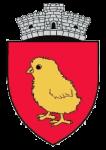 stema comunei PUI